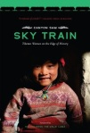 Sky Train Book Cover